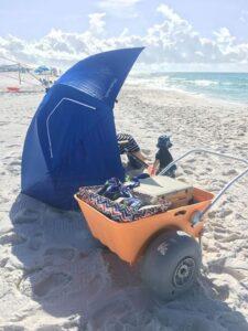 Wilson at Beach with Wheeleez Beach Cart